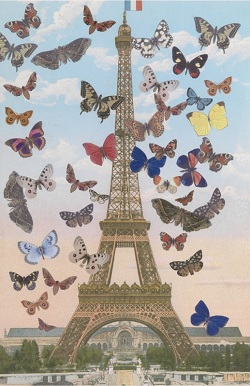 The Eiffel Tower with butterflies flying around it